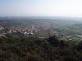 Navalpino