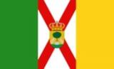 Contacte con el ayumtamiento Manzanilla
