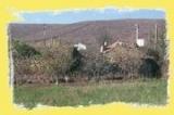 Contacte con el ayumtamiento Asturianos