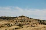 Contacte con el ayumtamiento Torremocha del Pinar